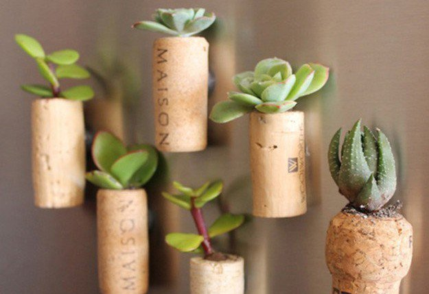Turning Your Trash Into Treasure With Upcycling