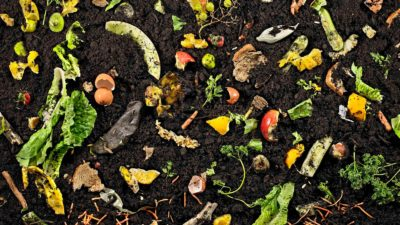 See How Your Neighbors Compost!